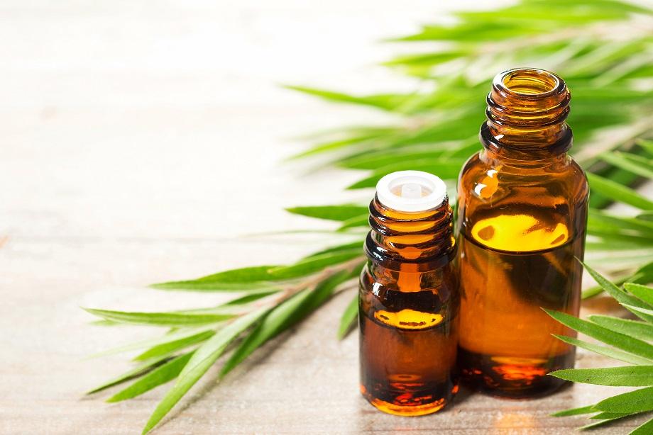 Aceite del árbol del té: usos y propiedades | Belleza IDEAL